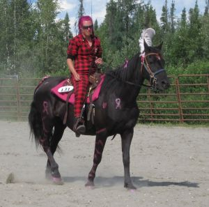 Horse decorated for Breast Cancer show