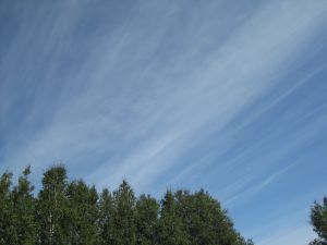 Jet stream cirrus, looking NE
