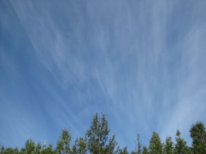 Jet stream cirrus, looking north