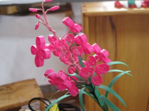 Quilled Fireweed