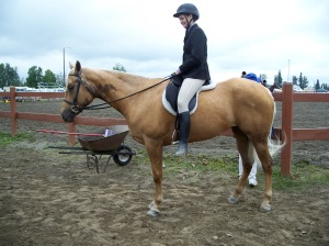 A palomino with a Bend Or spot