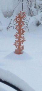 snowstake