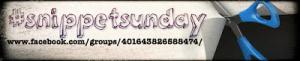 Snippet Sunday logo