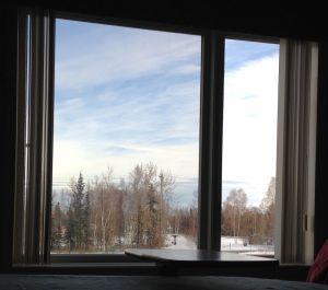 Hospital window 10-11-14