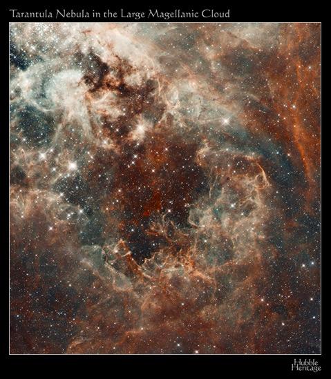 Taranula Nebula